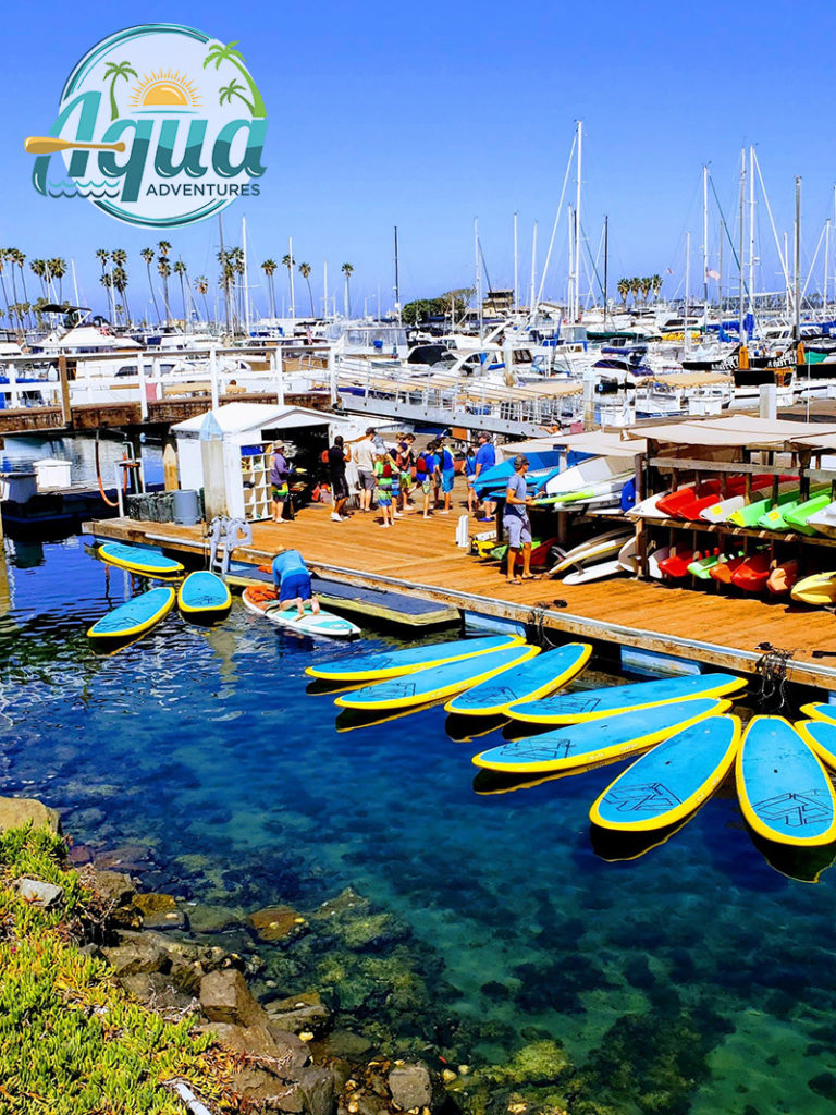 aqua-768x1024 chula vista harborfest san diego summer events